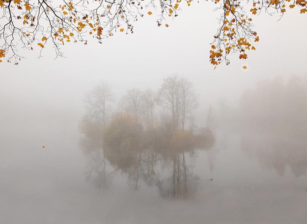 """фото """"Про опадающие листья"""" метки: пейзаж, природа, листья, озеро, осень, остров, туман"""