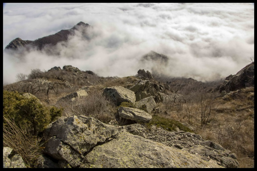 "photo ""***"" tags: landscape, fog, forest, mountains, rocks"