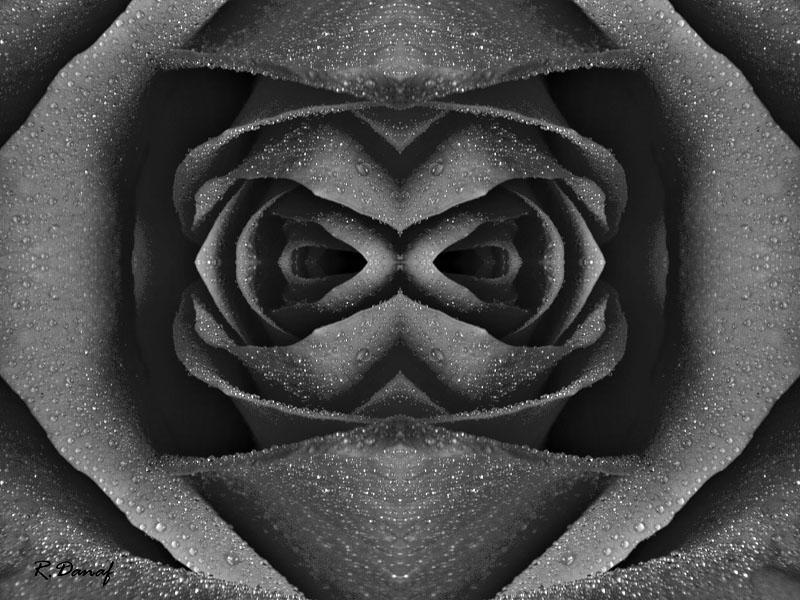 "фото ""Alien"" метки: digital art, абстракция, черно-белые,"