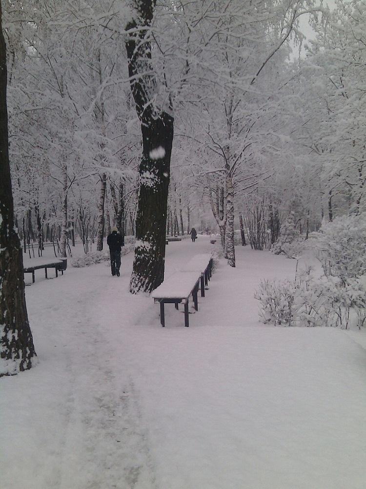 """фото """"один день обычной зимы"""" метки: город,"""