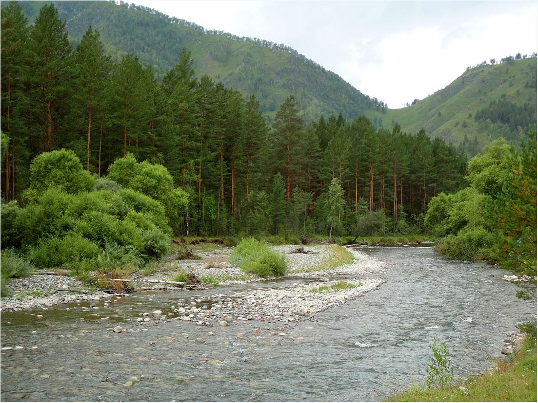 """фото """"***"""" метки: пейзаж, горы, лес, лето, река"""