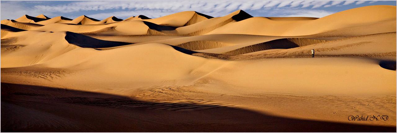 "фото ""Amidst the Dunes"" метки: пейзаж, природа, путешествия, Dsert, Sand, Африка"