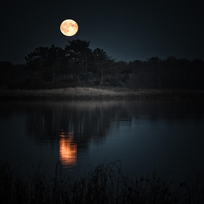 """фото """"Только ты и луна"""" метки: пейзаж,"""