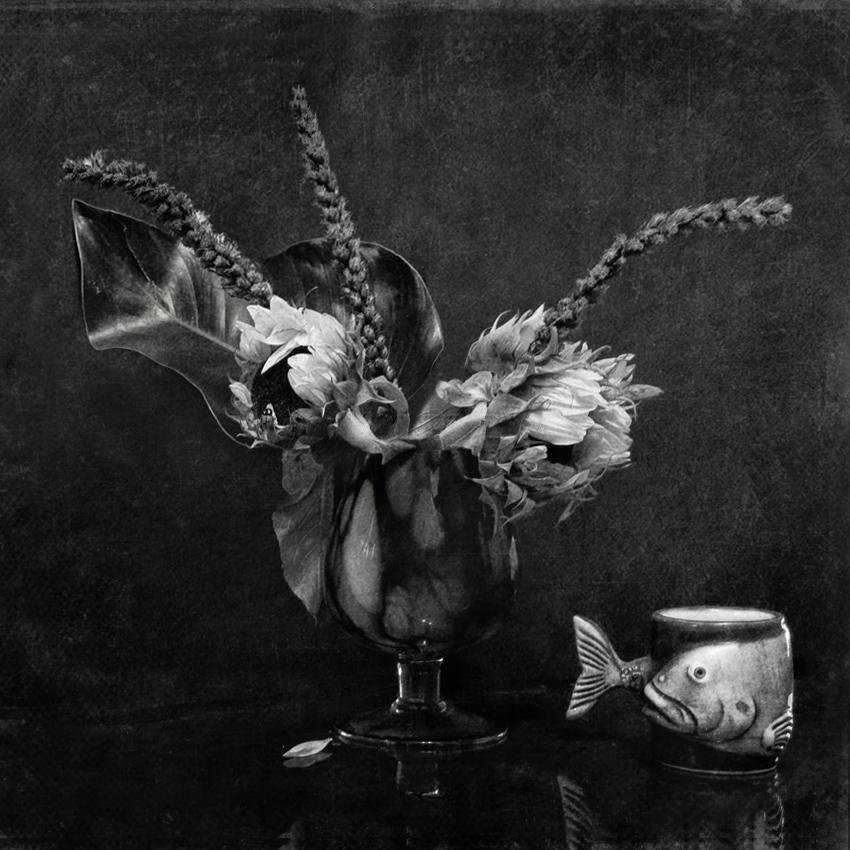 "фото ""Сон про рыбу"" метки: натюрморт, черно-белые,"