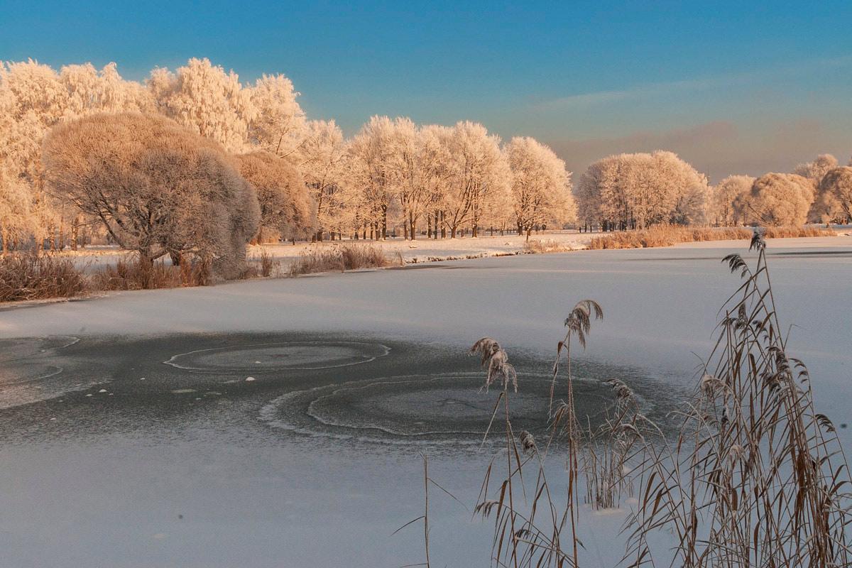 "фото ""Декабрь..."" метки: пейзаж, зима"