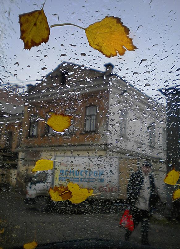 """фото """"осенние будни"""" метки: , капли, осень, стекло"""