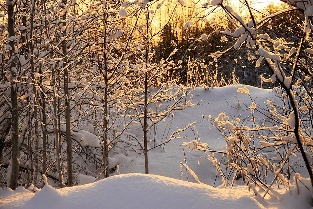 """фото """"Зимы сияние"""" метки: природа, путешествия, зима"""