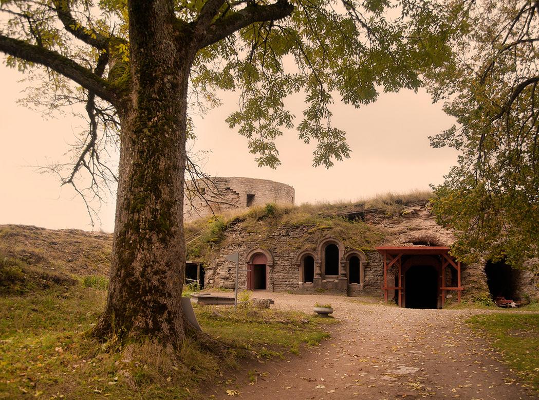 """фото """"Копорье... Здесь чувствуется запах старины..."""" метки: пейзаж, осень"""