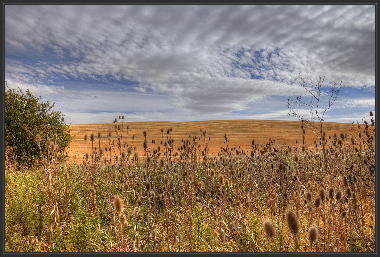 """фото """"Осеннее небо"""" метки: пейзаж, облака"""