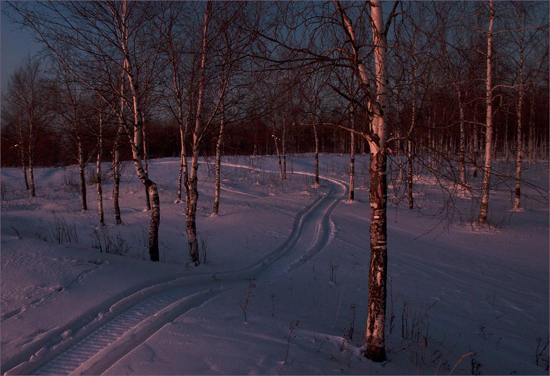 "фото ""Вечерняя прогулка"" метки: природа, пейзаж,"