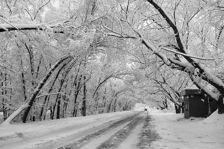 "фото ""Зимняя графика"" метки: пейзаж, черно-белые,"