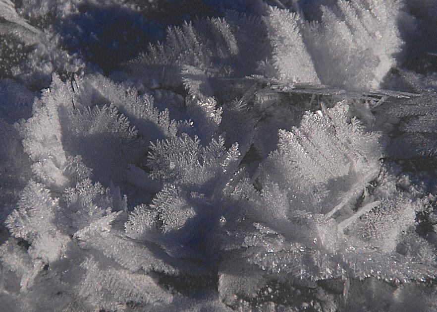 """фото """"Мороз рисует..."""" метки: макро и крупный план,"""