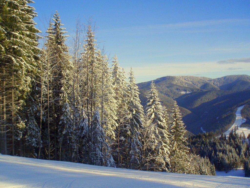 """фото """"Новогодняя открытка"""" метки: пейзаж, путешествия, природа, БУКОВЕЛЬ, Карпаты, Украина, горы, зима, снег"""