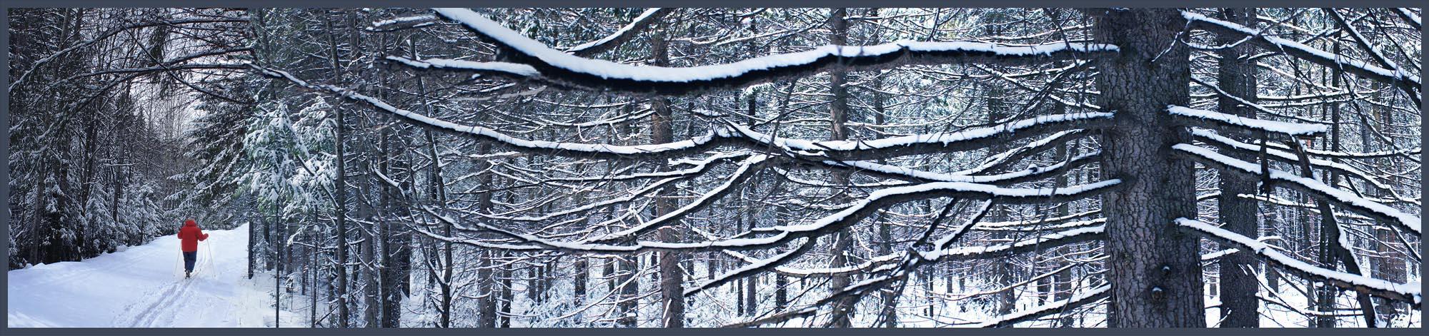 """фото """"воскресная прогулка"""" метки: пейзаж, природа,"""