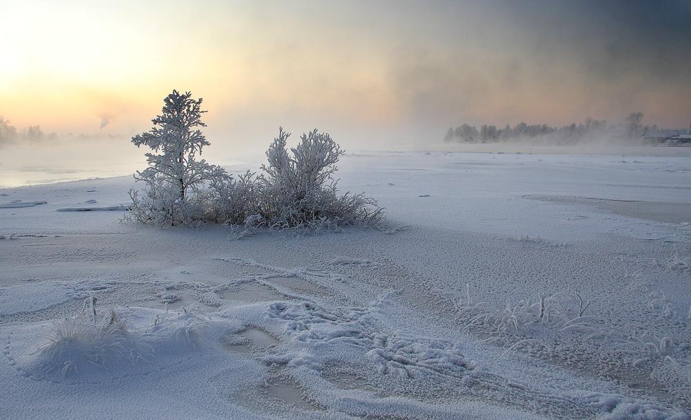 """фото """"Островок"""" метки: пейзаж,"""