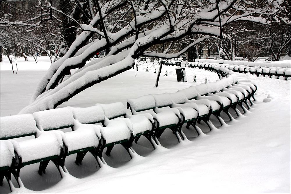 """photo """"***"""" tags: landscape, city, black&white, Bucharest, parks, snow, winter"""