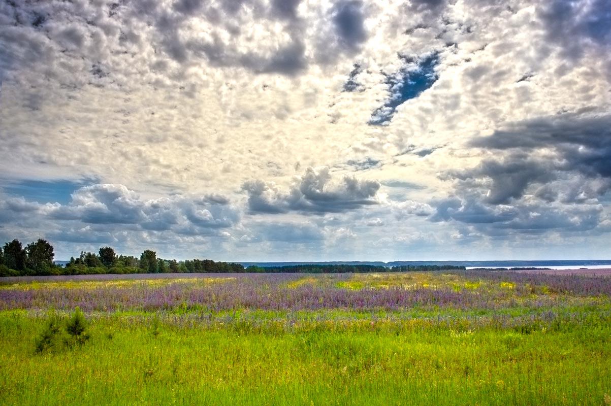 "фото ""Татарстанский Прованс"" метки: пейзаж, разное, поля"