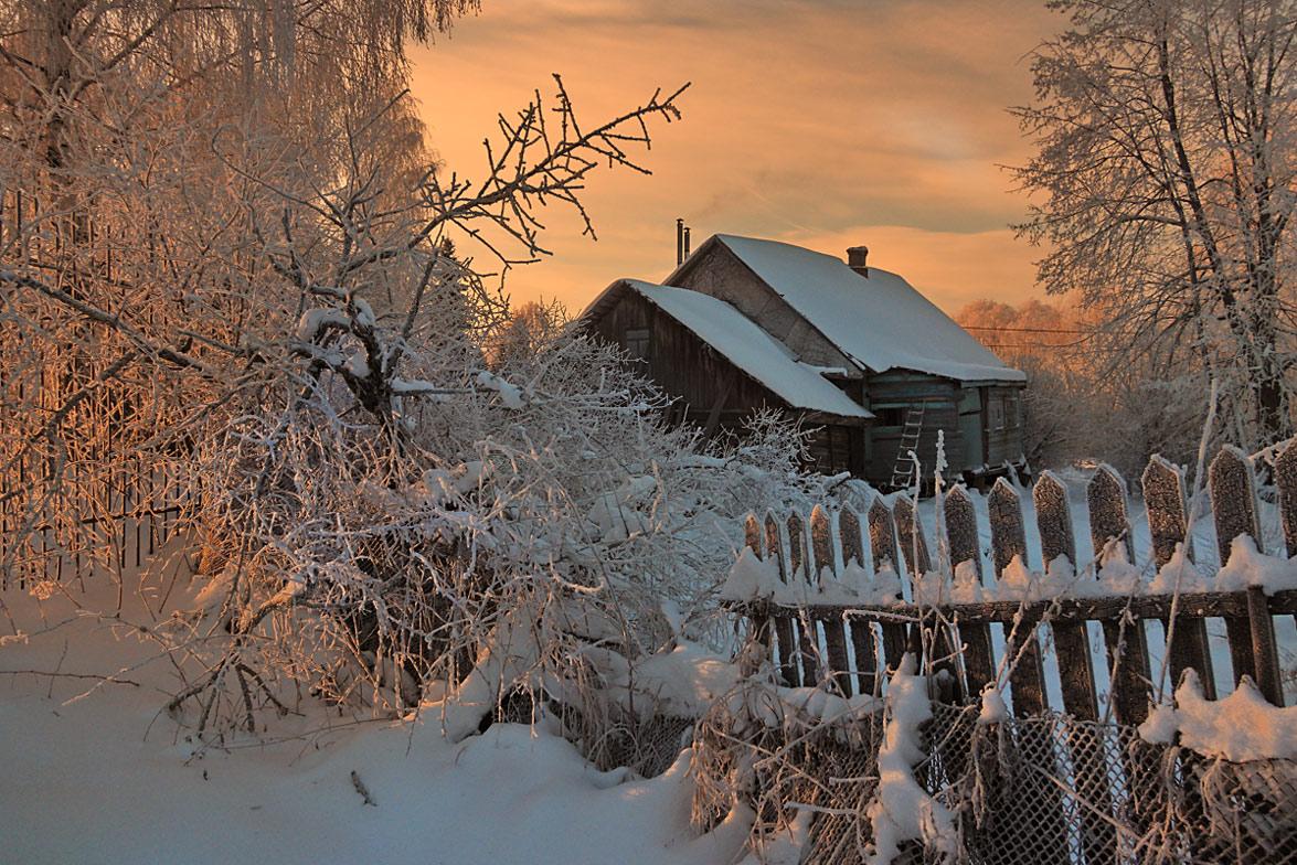 """фото """"Зимним утром"""" метки: пейзаж, ветви, зима, рассвет, снег, солнце"""