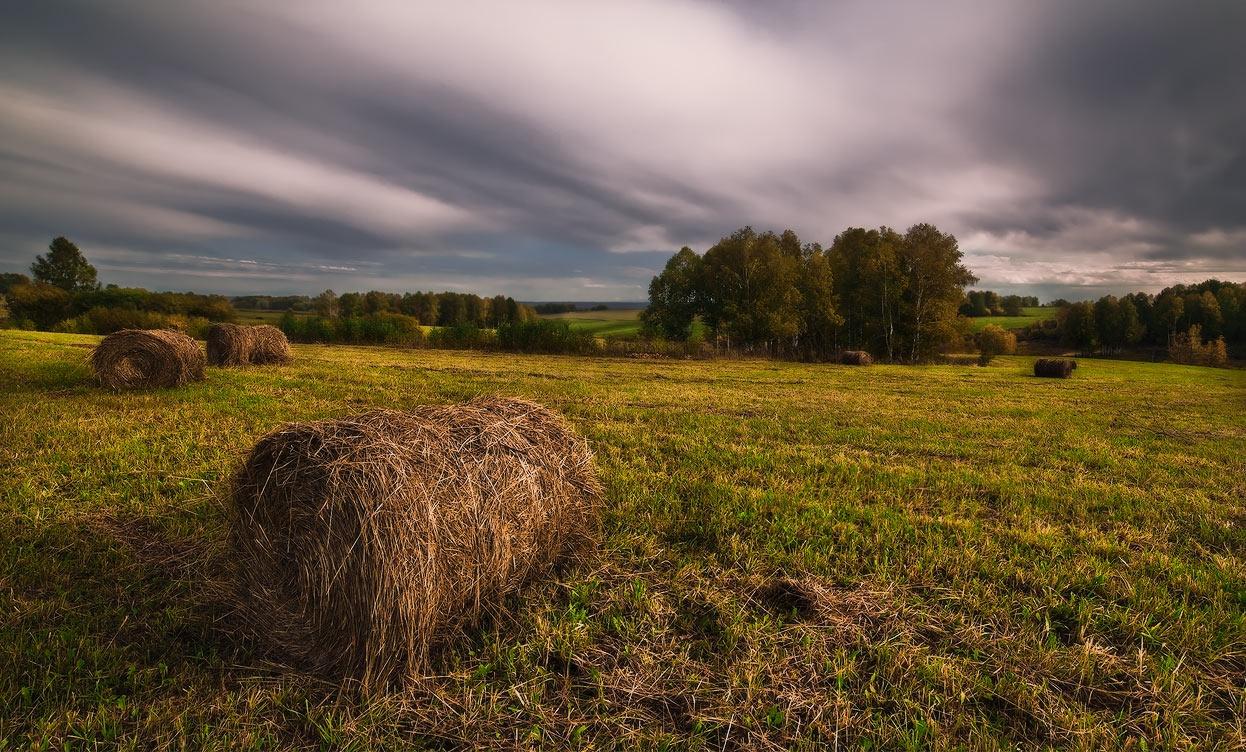 "фото ""Вспоминая сенокос..."" метки: пейзаж, осень, сенокос"