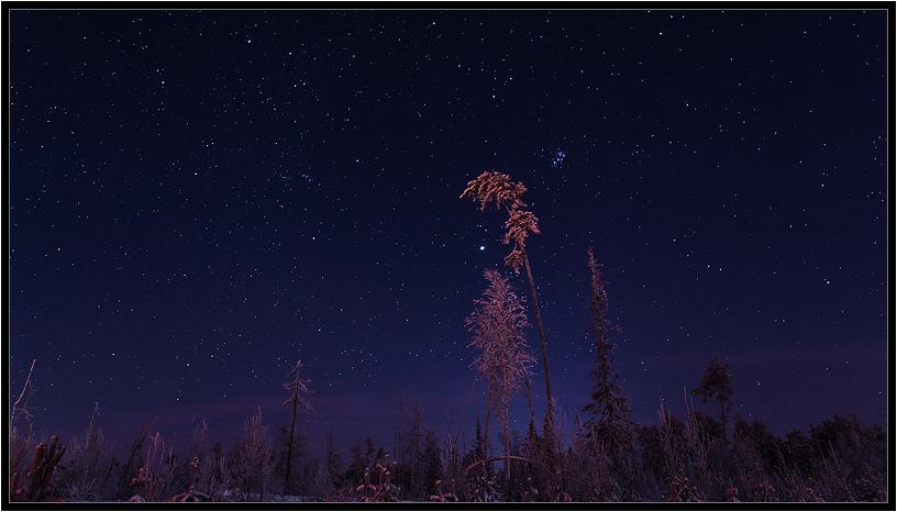 """фото """"Зимняя ночь."""" метки: пейзаж,"""
