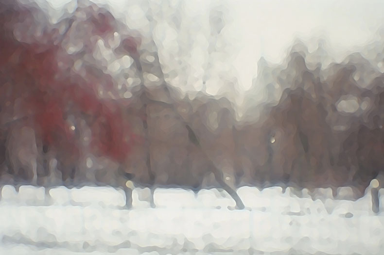 """фото """"Зимний бульвар."""" метки: разное,"""