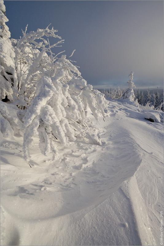 """фото """"0190_0079"""" метки: пейзаж, зима, лес"""