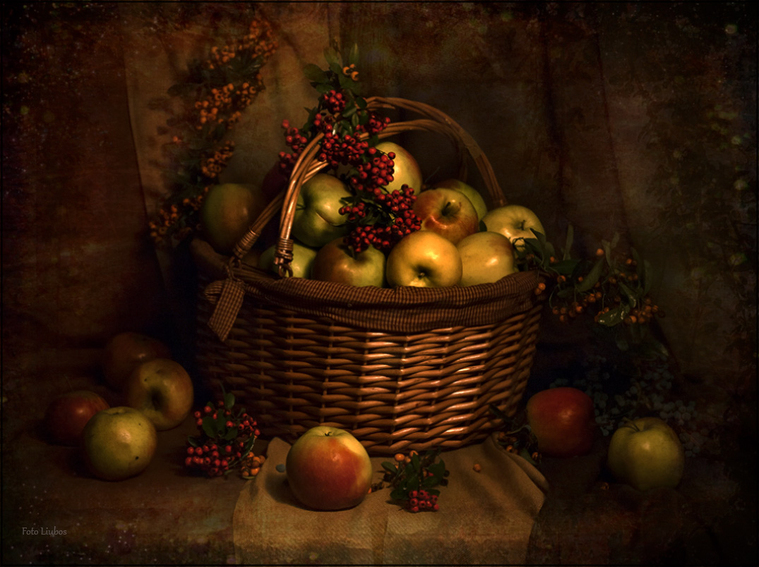 "photo ""Still Life with Apples"" tags: still life, foto liubos, still life, яблоки"