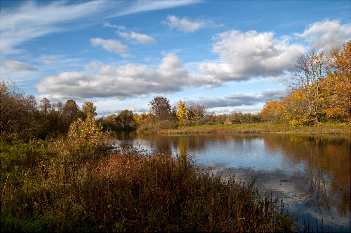 "photo ""***"" tags: landscape, autumn, birches, clouds, forest, grass, river, water, деревня"
