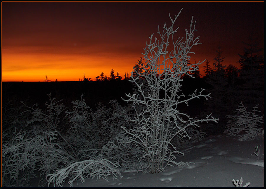 "photo ""***"" tags: landscape, night, sunset, winter, мороз"