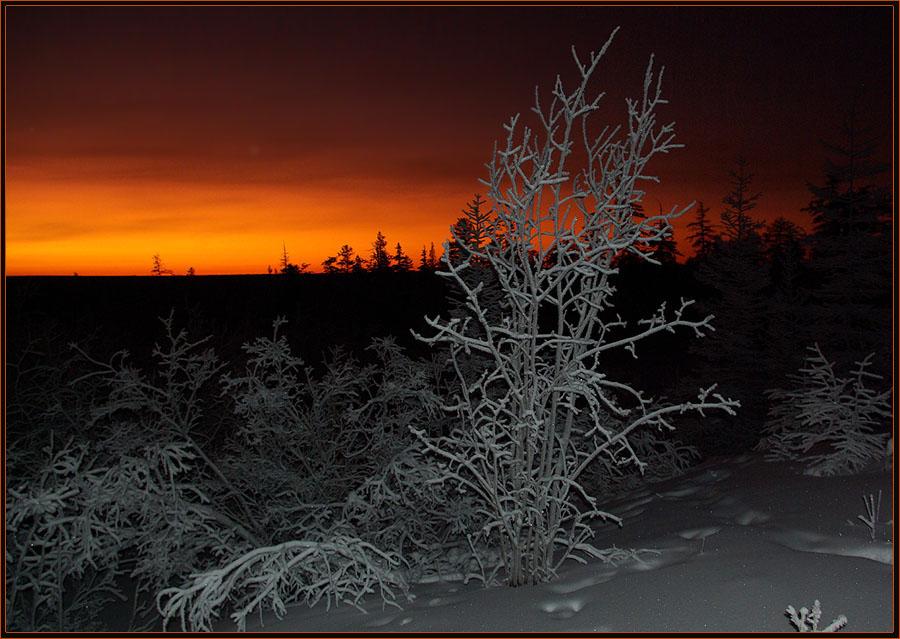 "фото ""Наступает ночь"" метки: пейзаж, закат, зима, мороз, ночь"