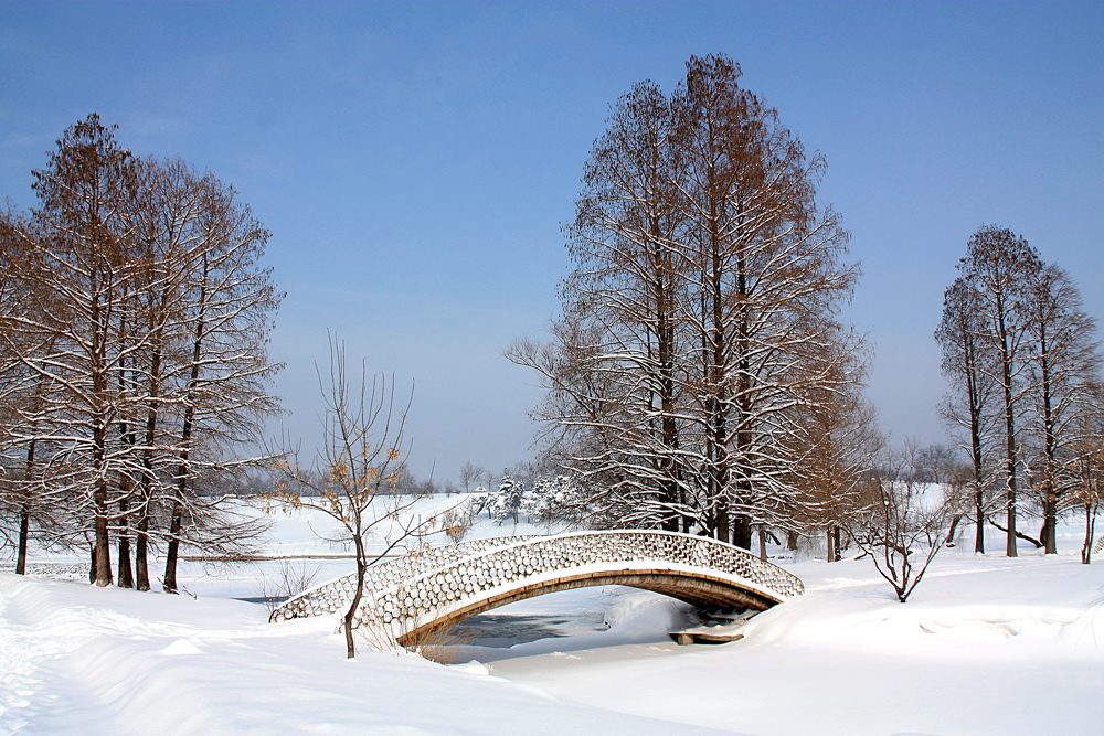 "photo ""***"" tags: landscape, city, Bucharest, lake, park, snow, trees, winter"