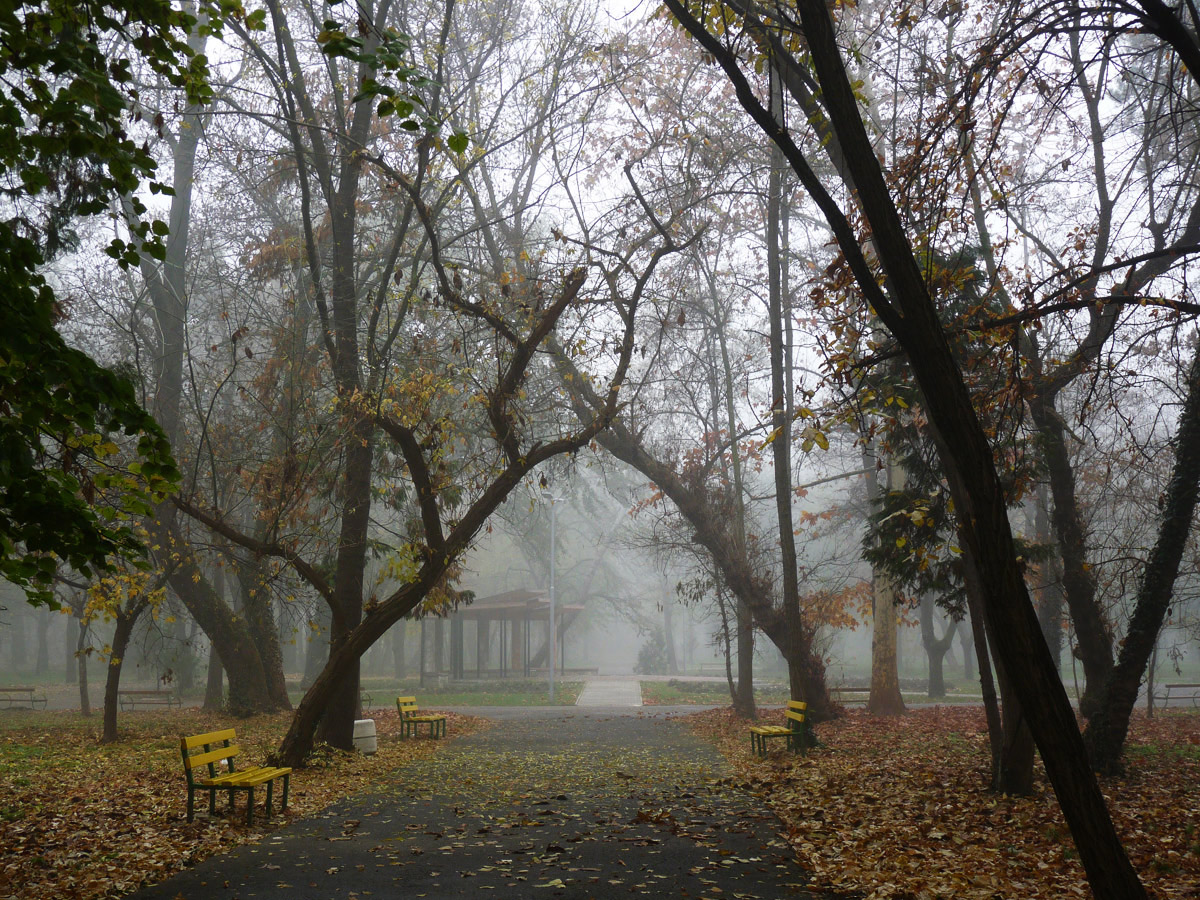"photo ""***"" tags: city, fog"