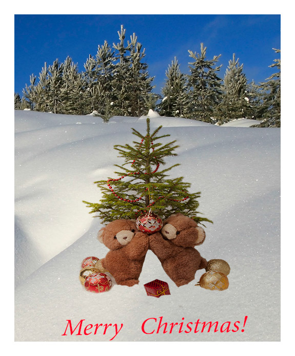 "фото ""Merry Christmas, dear friends!"" метки: ,"