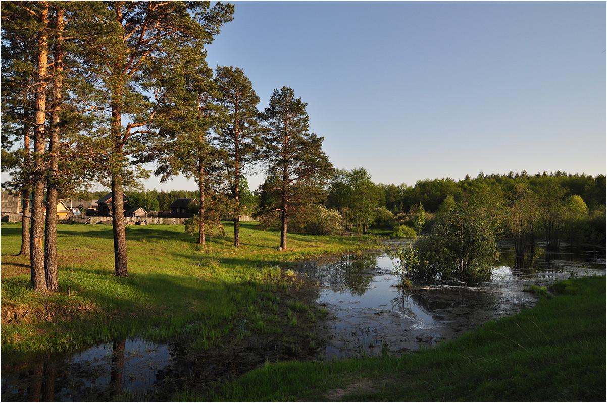 "фото ""Был месяц май"" метки: пейзаж, весна, вода, деревня, дома, ели, лес"