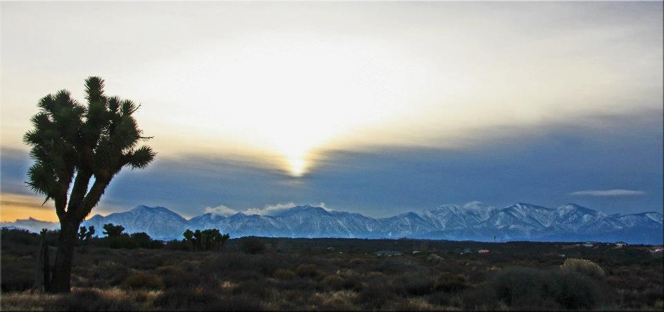 "фото ""High Desert"" метки: пейзаж, путешествия, панорама,"