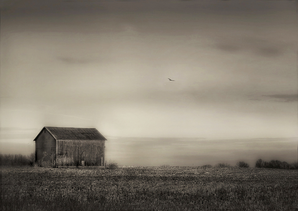 "photo ""Solitude"" tags: landscape,"