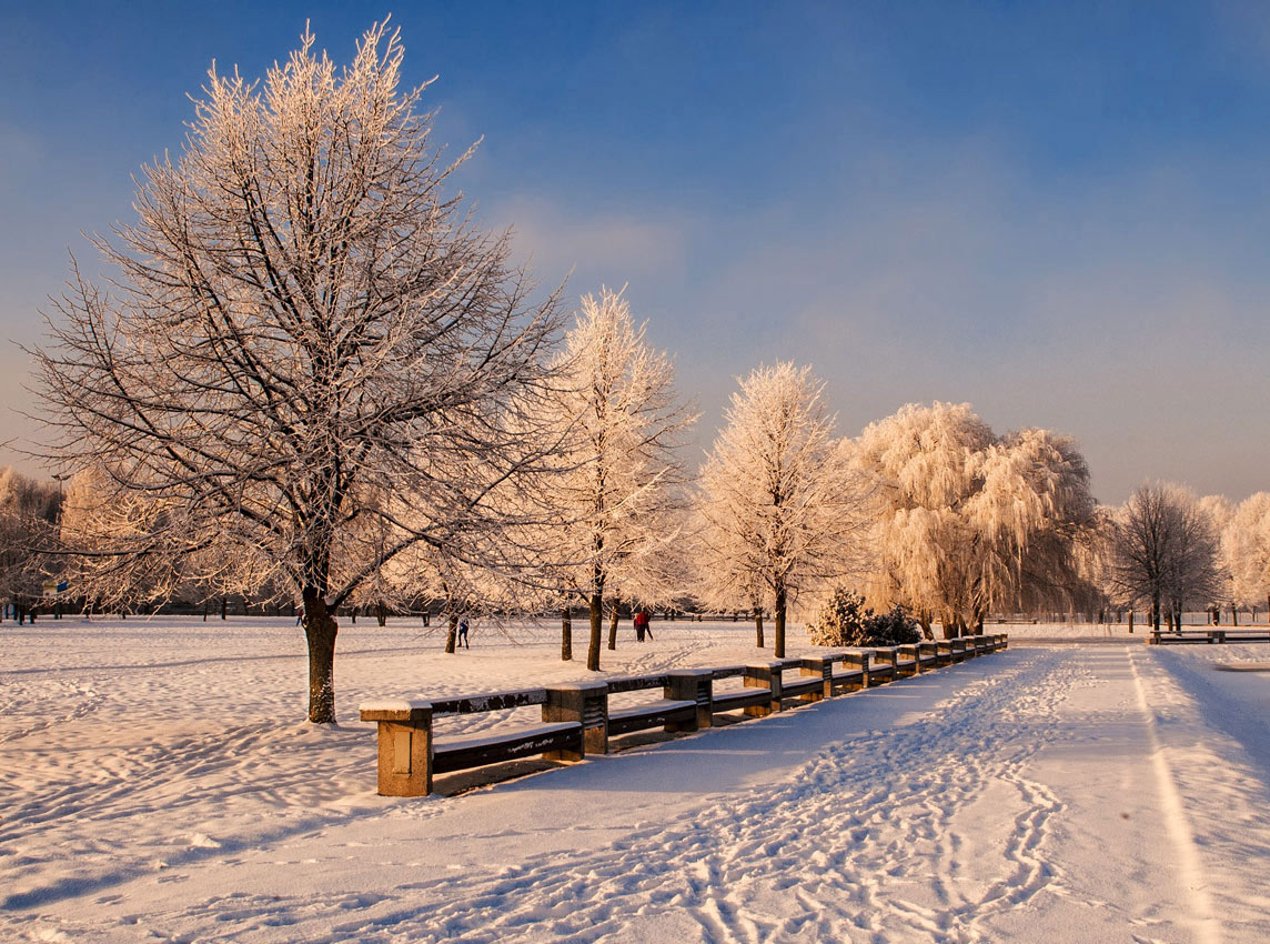 "фото ""В зимнем парке..."" метки: пейзаж, зима"