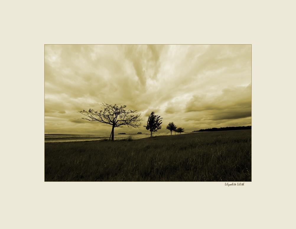 "фото ""things will change"" метки: пейзаж, природа,"