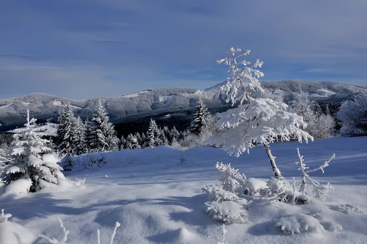 "photo ""***"" tags: landscape, panoramic, nature, forest, mountains, winter"