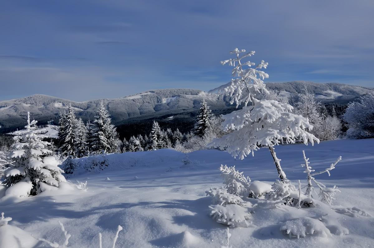 "фото ""***"" метки: пейзаж, панорама, природа, горы, зима, лес"