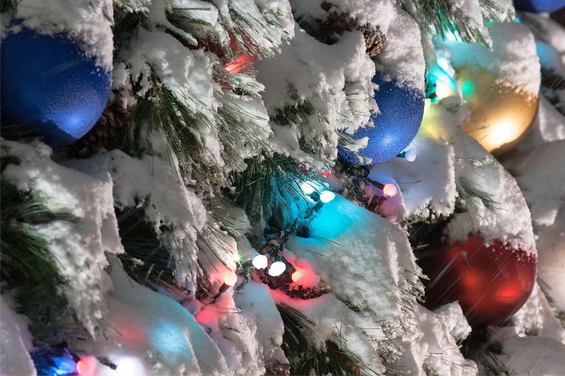 """фото """"С Новым годом, форумчане!) Пусть новый год будет для вас счастливым!"""" метки: фрагмент, макро и крупный план,"""