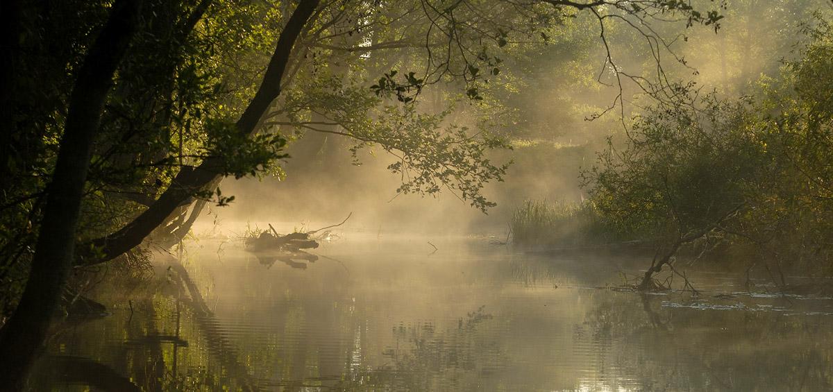 """фото """"Амазонка местного разлива"""" метки: ,"""