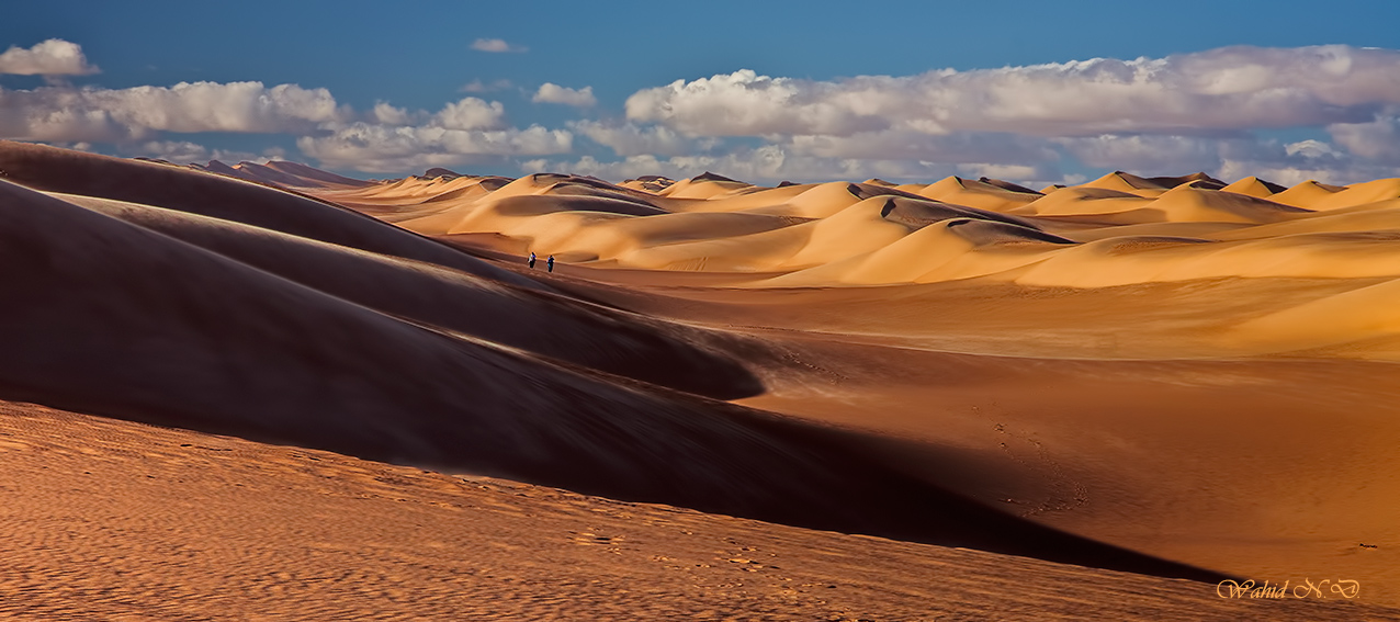 "photo ""Dunes all over"" tags: landscape, travel, nature, Africa, Dsert"