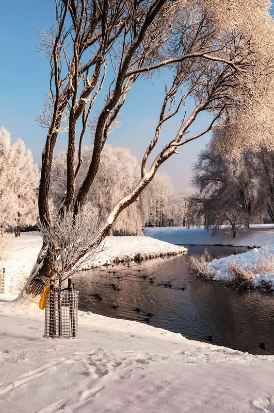 """фото """"Вспоминая зиму..."""" метки: пейзаж, вода, зима, облака"""