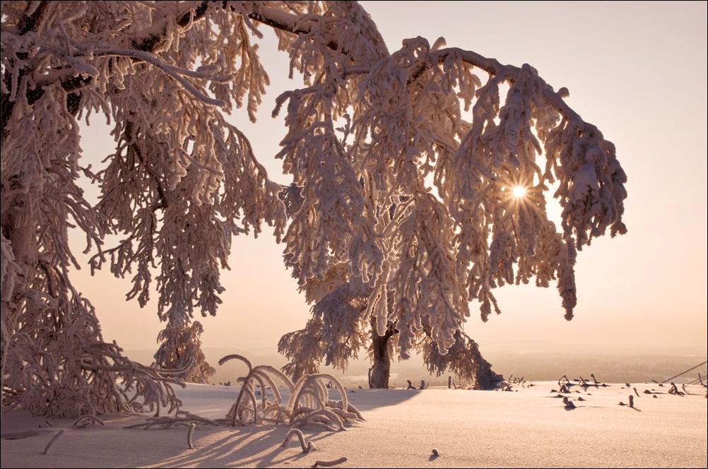 """фото """"Уральское утро..."""" метки: пейзаж,"""