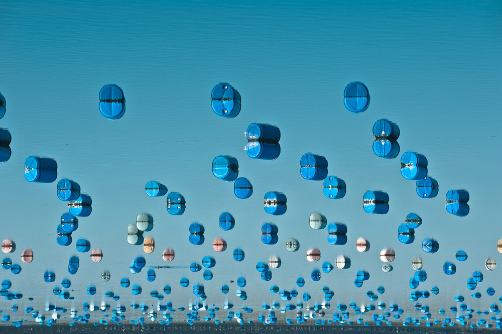 "фото ""upsidedown"" метки: пейзаж, абстракция, Europe, blue, farm, holland, zeeland, вода"