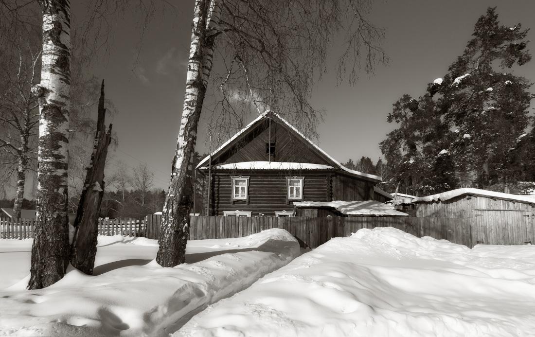 """фото """"Домик у леса"""" метки: пейзаж, черно-белые, березы, дым, зима, избушка, мороз, снег, солнце, сугробы, текстура"""
