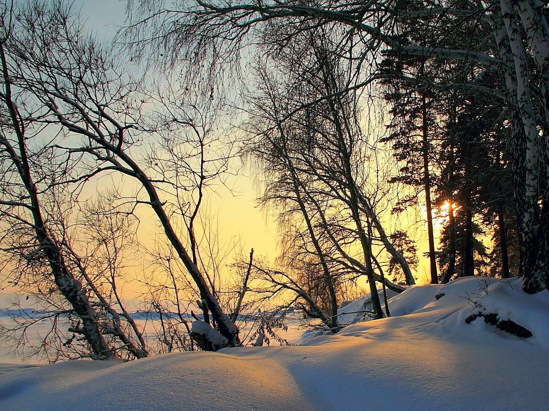 """фото """"Спряталось Солнце за деревом..."""" метки: пейзаж,"""