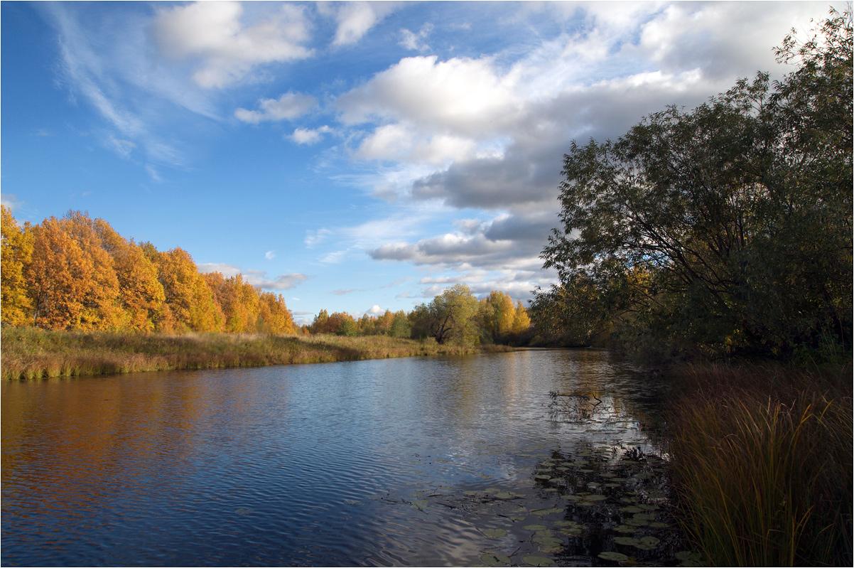 """фото """"И был сентябрь..."""" метки: пейзаж, березы, вода, деревня, лес, облака, осень, река, трава"""