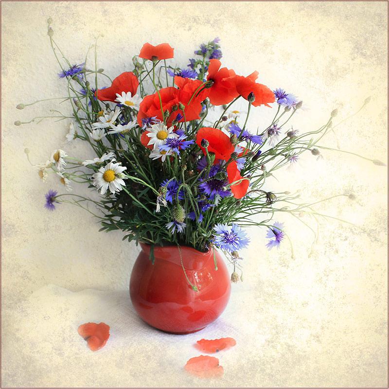 """фото """"Для вас,друзья,- просто так..."""" метки: натюрморт, foto liubos, still life, цветы"""